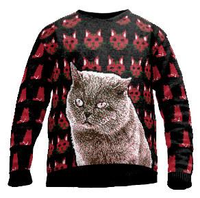 Katzen Pullover Strick