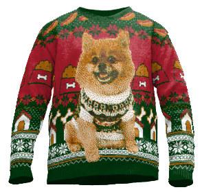 Weihnachtspullover mit Haustier Foto