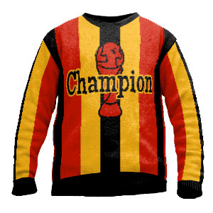 Pullover Fussball Champion